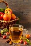 τρισδιάστατος μήλων φυσικός διαφανής χυμού εικόνας γυαλιού τροφίμων πτώσης μήλων εννοιολογικός Στοκ Εικόνα