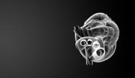 τρισδιάστατος δώστε την άσπρη καρδιά Στοκ φωτογραφία με δικαίωμα ελεύθερης χρήσης