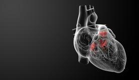 τρισδιάστατος δώστε τη βαλβίδα καρδιών Στοκ Φωτογραφίες