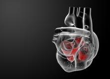 τρισδιάστατος δώστε το αίθριο καρδιών Στοκ Εικόνες