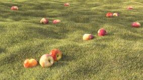 τρισδιάστατο δίνοντας ρεαλιστικό καλοκαίρι τομέων χλόης με το μήλο Στοκ Εικόνες