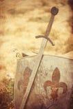 τρισδιάστατο λευκό ξιφών ασπίδων Στοκ φωτογραφία με δικαίωμα ελεύθερης χρήσης