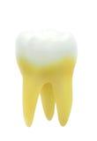 τρισδιάστατο λευκό δοντιών διάλυσης ανασκόπησης υψηλό απομονωμένο εικόνα Στοκ φωτογραφία με δικαίωμα ελεύθερης χρήσης