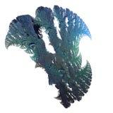 τρισδιάστατο fractal ανασκόπησ&e Στοκ Εικόνα