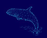 Τρισδιάστατο polygonal πρότυπο τριγώνων φαλαινών δολοφόνων Υποβρύχιο τέρας κινδύνου θάλασσας άγριο Καμμένος μπλε συνδεδεμένο λογό Στοκ Εικόνα