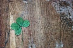 Τριφύλλι τριφυλλιού τεσσάρων φύλλων για την καλή τύχη στο υπόβαθρο των παλαιών ξύλινων σανίδων Κρύος τόνος Στοκ Φωτογραφίες