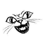 Τρομακτική γάτα χαμόγελου, πρόσωπο Στοκ Φωτογραφία