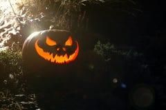 Τρομακτική κολοκύθα φαναριών αποκριών Jack O Στοκ εικόνες με δικαίωμα ελεύθερης χρήσης