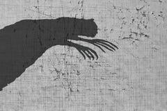 Τρομακτική σκιά στον τοίχο Στοκ εικόνες με δικαίωμα ελεύθερης χρήσης