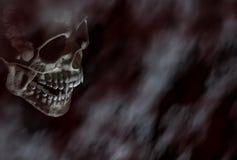 Τρομακτικό κρανίο βαμπίρ αποκριών στο σκοτεινό υπόβαθρο στοκ εικόνες με δικαίωμα ελεύθερης χρήσης