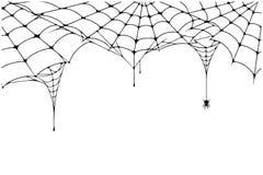 Τρομακτικό υπόβαθρο Ιστού αραχνών Υπόβαθρο ιστών αράχνης με την αράχνη Απόκοσμος Ιστός αραχνών για τη διακόσμηση αποκριών απεικόνιση αποθεμάτων