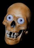 Τρομακτικό scull Στοκ φωτογραφία με δικαίωμα ελεύθερης χρήσης