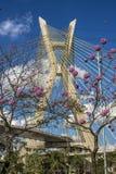 τρομερή γέφυρα στοκ φωτογραφία με δικαίωμα ελεύθερης χρήσης
