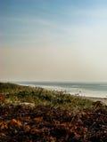 τρομερό τοπίο στοκ φωτογραφία με δικαίωμα ελεύθερης χρήσης