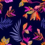 Τροπικά δασικά χρώματα Στοκ εικόνες με δικαίωμα ελεύθερης χρήσης
