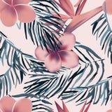 Τροπικά εξωτικά λουλούδια και φυτά με τα πράσινα φύλλα του φοίνικα Στοκ εικόνα με δικαίωμα ελεύθερης χρήσης