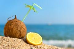 Τροπικά καρύδα και φρούτα στην παραλία Στοκ εικόνες με δικαίωμα ελεύθερης χρήσης