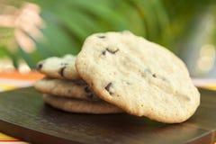 Τροπικά μπισκότα τσιπ σοκολάτας Στοκ Φωτογραφία