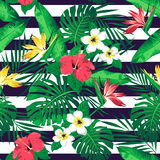 Τροπικά λουλούδια και φύλλα στο ριγωτό υπόβαθρο Στοκ εικόνα με δικαίωμα ελεύθερης χρήσης