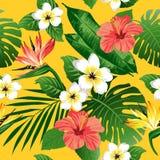 Τροπικά λουλούδια και φύλλα στο υπόβαθρο Στοκ εικόνα με δικαίωμα ελεύθερης χρήσης