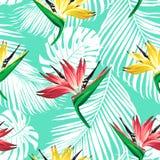 Τροπικά λουλούδια και φύλλα φοινικών στο υπόβαθρο Στοκ Εικόνα