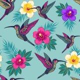 Τροπικά λουλούδια με ένα σχέδιο πουλιών Στοκ Εικόνες