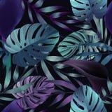 Τροπικά λουλούδια, φύλλα ζουγκλών, λουλούδι πουλιών του παραδείσου Στοκ εικόνες με δικαίωμα ελεύθερης χρήσης