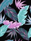 Τροπικά λουλούδια, φύλλα ζουγκλών, λουλούδι πουλιών του παραδείσου Στοκ εικόνα με δικαίωμα ελεύθερης χρήσης