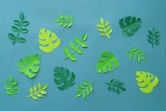 Τροπικά πέταλα φύσης Handcrafted Papercraft Χόμπι του φύλλου εγγράφου Δημιουργικότητα παιδιών ` s Στοκ Φωτογραφία