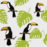 Τροπικά πουλιά Toucans και άνευ ραφής σχέδιο Lotuses, εξωτικό τροπικό επαναλαμβανόμενο φύλλα σχέδιο Backround τροπικών δασών πουλ διανυσματική απεικόνιση