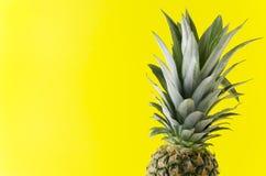 Τροπικά τρόφιμα, ανανάς με τα πράσινα φύλλα στο κίτρινο υπόβαθρο στοκ εικόνες