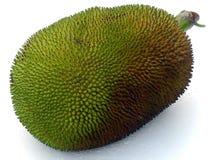 Τροπικά φρούτα αποκαλούμενα jaca Στοκ Εικόνες