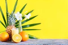 Τροπικά φρούτα αχύρου γυαλιού καταφερτζήδων χυμού χρώματος Στοκ εικόνα με δικαίωμα ελεύθερης χρήσης