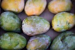 Τροπικά φρούτα μάγκο σε ένα κιβώτιο Στοκ Εικόνες