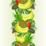 Τροπικά φρούτα υποβάθρου συνόρων άνευ ραφής που τίθενται με το τροπικό ficus φύλλων, φοίνικας, philodendron, διανυσματική απεικόν διανυσματική απεικόνιση