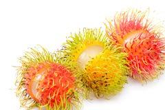 Τροπικά φρούτα rambutan Στοκ Φωτογραφίες