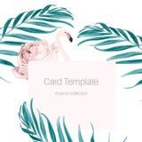 Τροπικά φύλλα φοινικών ροδαλών ισχίων φλαμίγκο καρτών ρόδινα διανυσματική απεικόνιση