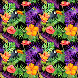 Τροπικά φύλλα, εξωτικά λουλούδια, toucan πουλί, gecko άνευ ραφής ταπετσαρία watercolor Στοκ Εικόνες