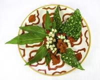 Τροπικά φύλλα και λουλούδια στο ασιατικό πιάτο στοκ εικόνες