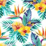 Τροπικά φύλλα και λουλούδια floral απεικόνιση σχεδίου ανασκόπησής σας Στοκ Εικόνα