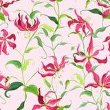 Τροπικά φύλλα και Floral υπόβαθρο - λουλούδια κρίνων πυρκαγιάς ελεύθερη απεικόνιση δικαιώματος