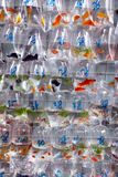 Τροπικά ψάρια ενυδρείων και plat στην αγορά Χονγκ Κονγκ goldfish Στοκ εικόνες με δικαίωμα ελεύθερης χρήσης