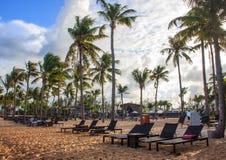 Τροπικές παραθαλάσσιο θέρετρο και βίλα με τα deckchairs, την άσπρους άμμο και τους φοίνικες Στοκ φωτογραφίες με δικαίωμα ελεύθερης χρήσης