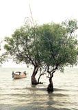 Τροπική άποψη παραλιών στο εκλεκτής ποιότητας ύφος Ωκεάνιο τοπίο με Ταϊλανδό Στοκ εικόνες με δικαίωμα ελεύθερης χρήσης