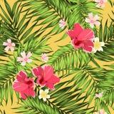 Τροπική ζουγκλών φοινικών σύσταση λουλουδιών φύλλων φωτεινή ελεύθερη απεικόνιση δικαιώματος