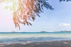 τροπική θάλασσα παραλιών με τον ωκεανό φωτός του ήλιου δέντρων πεύκων στο θερινό μπλε ουρανό και το υπόβαθρο νησιών στοκ φωτογραφία