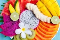 Τροπική κατάταξη φρούτων σε ένα πιάτο Τοπ όψη Στοκ Εικόνες