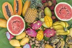 Τροπική κατάταξη φρούτων φύλλα στα πράσινα μπανανών Το Yummy επιδόρπιο, κλείνει επάνω Μάγκο, papaya, μπανάνα, pitahaya και καρπού στοκ φωτογραφίες με δικαίωμα ελεύθερης χρήσης