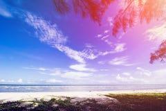 Τροπική παραλία, θερινή παραλία, τοπίο παραλιών, νεφελώδης ουρανός στοκ φωτογραφίες με δικαίωμα ελεύθερης χρήσης