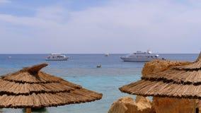 Τροπική παραλία με τις ομπρέλες θαλάσσης στη Ερυθρά Θάλασσα κοντά στην κοραλλιογενή ύφαλο Αίγυπτος απόθεμα βίντεο